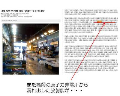 2011_04_04_003.jpg